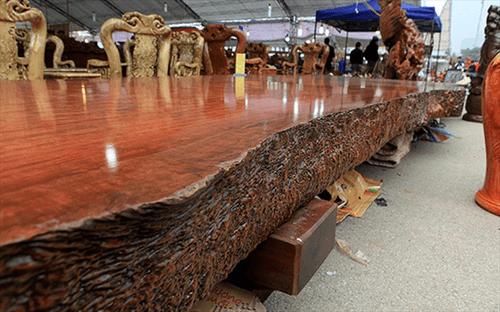 Gỗ Cẩm Lai là gì? Đặc điểm của gỗ Cẩm Lai có mấy loại