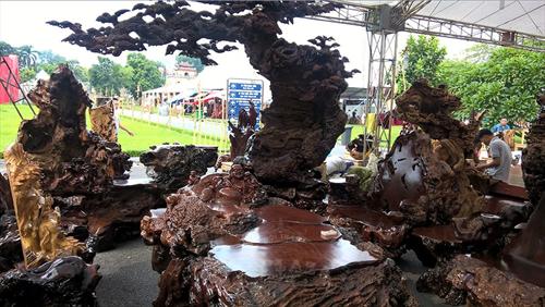 Tìm hiểu về gỗ nu lũa và các tác phẩm nghệ thuật nu lũa