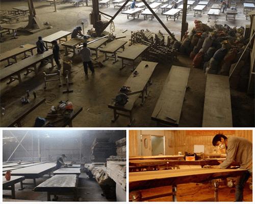 Tìm hiểu về gỗ Sao và giá bán gỗ Sao nguyên khối