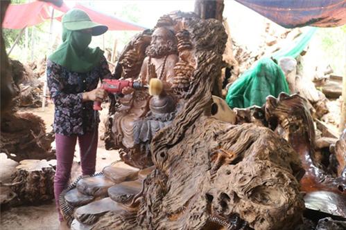 Tìm hiểu về gỗ Cẩm Thị và Nu Cẩm Thị